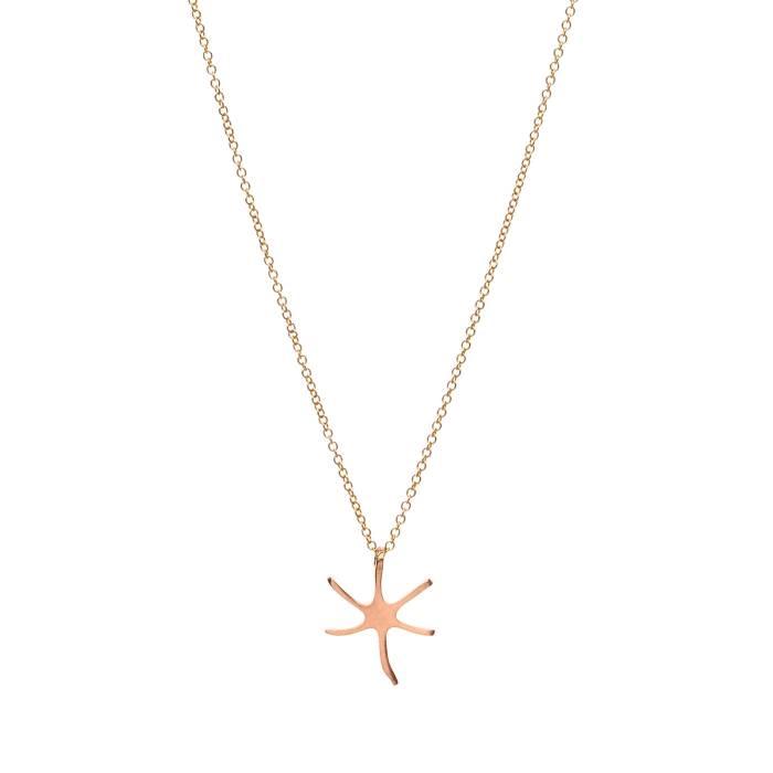 STAR FISH D