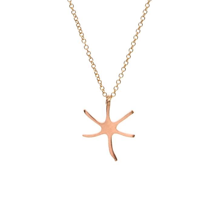 STAR FISH E
