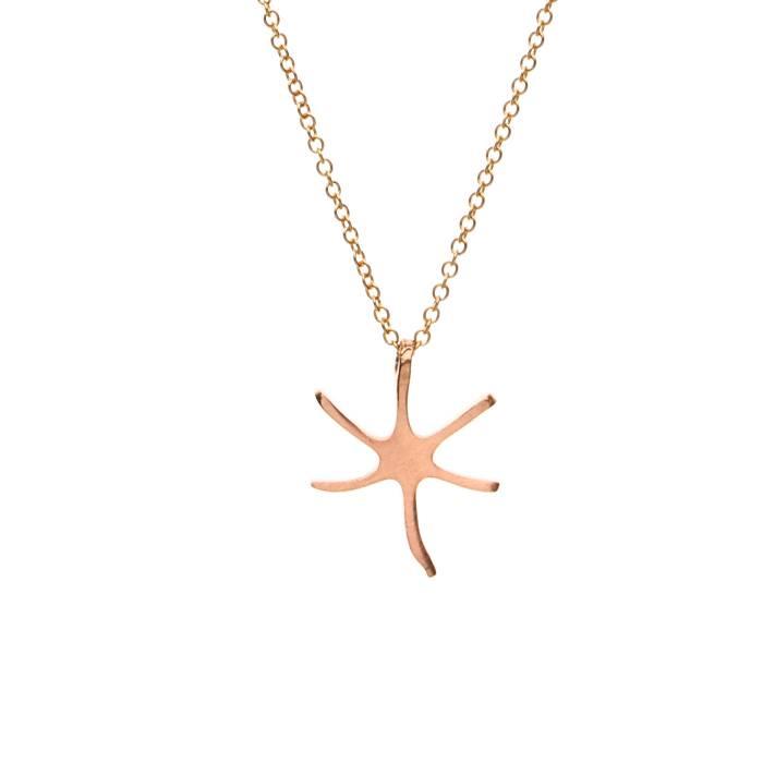 STAR FISH F